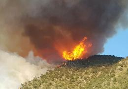 «Արևիք» ազգային պարկում բռնկված հրդեհի արդյունքում այրվել է մոտ 423 հա տարածք